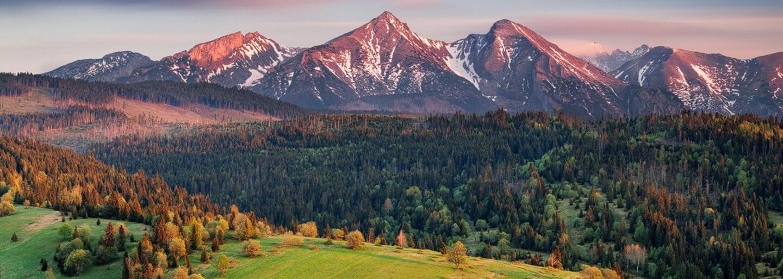 Ako sú na tom slovenské lesy? Podľa mnohých sú neustále drancované, no pokrývajú polovicu krajiny