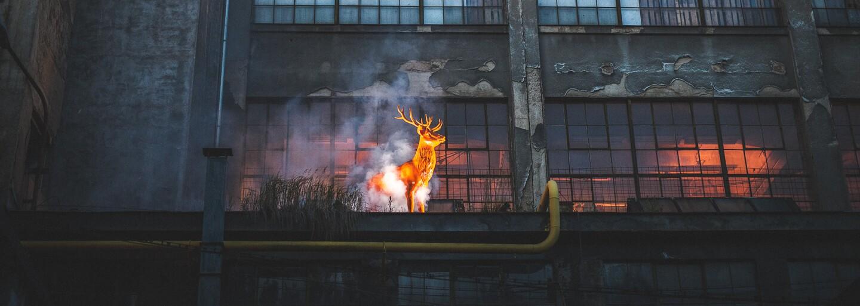 Jak to vypadalo na Noci lovců v pražské zchátralé a opuštěné továrně na Kolbenově ulici? (Fotoreport)