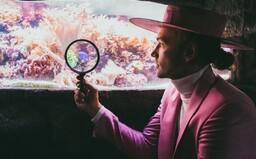 Albert z Bert & Friends: Naše hudba podněcuje fantazii a imaginárno. Ultimátní pravdy nevytváří magnetismus (Rozhovor)