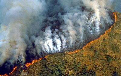 Amazonský prales hoří už několik týdnů. Země vyhlásila mimořádný stav