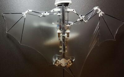 Američania zhotovili dron v podobe netopiera s totožnými letovými schopnosťami