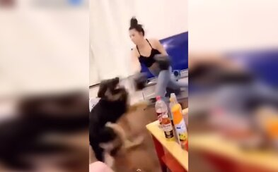 Američanka na videu boxuje se psem. V černých rukavicích mu dává rány jako v ringu