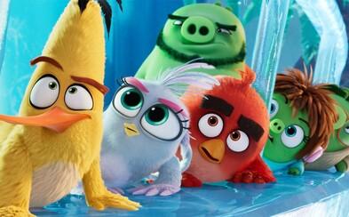 Angry Birds 2 je najlepšie hodnoteným filmom podľa hier. Zábavná rodinná komédia štartuje v našich kinách už zajtra
