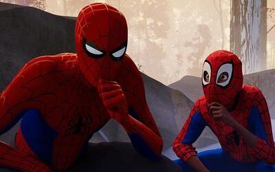 Animovaný Spider-Man je tak dobrý, že už nyní se pracuje na pokračování a spin-offu s ženskými hrdinkami!