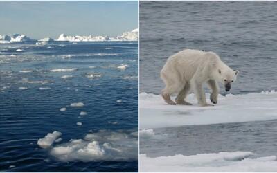 Antarktída a Grónsko sa topia veľmi rýchlo, takýmto tempom bude musieť planéta čeliť fatálnym dôsledkom