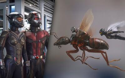 Ant-Man a Wasp je oproti jednotke bláznivejšiou a akčnejšou jazdou plnou humoru. Zároveň otvára bránu pre dej Avengers 4 (Recenzia)