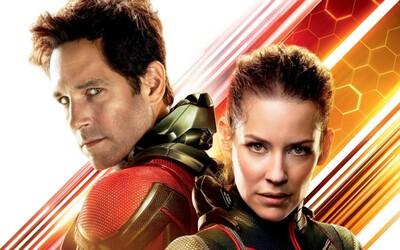 Ant-Man a Wasp je podľa zahraničných kritikov skvelou zábavou s výbornými efektami a parádnou Evangeline Lilly