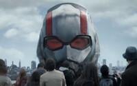 Ant-Man je gigantický a Wasp tančí ve vzduchu na vrhacích nožích. Debutový trailer pro Ant-Man 2 je plný skvostné akce