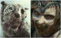 Army of the Dead je najväčší zombie film tohto roka. Zack Snyder plánuje počas apokalypsy veľkú lúpež