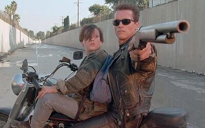 Arnold Schwarzenegger je ultimátní akční hrdina. Herec vyhrál v detailní analýze zabíjení, hláškování či rvaček