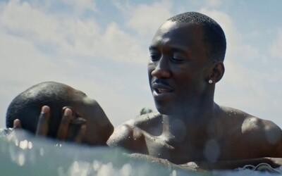 Atmosferický trailer vás zavede do příběhu afroamerického homosexuála v průběhu etap jeho života