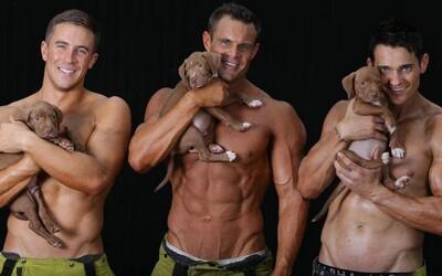 Atraktívni hasiči, ktorí neváhali zhodiť oblečenie pre dobrú vec. Tentoraz sa rozhodli pomôcť zvieratám