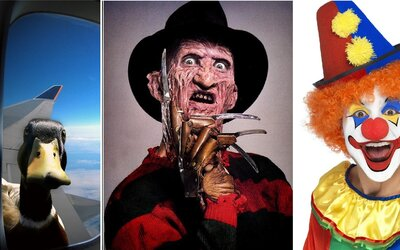 Atypické fóbie: Hrôzostrašní klauni, zákutia ríše snov a všadeprítomné vtáctvo