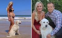 Austrálska dvojica spravila aj zo svojho psa vegána. Raňajkuje vločky a namiesto kostí žuje kešu oriešky