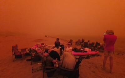 Australské požáry si už vyžádaly 18 lidských životů, téměř tisíc domácností je zdevastovaných