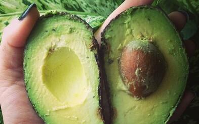 Avokádo je zdravá kalorická bomba a zároveň ovoce, které mnozí milují a jiní nenávidí