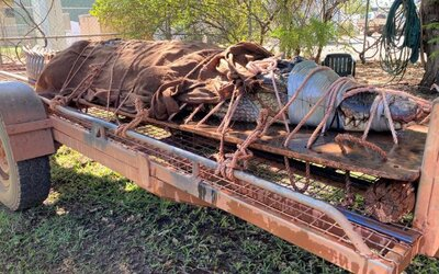 Až 4,4-metrový krokodíl relaxoval na populárnom turistickom mieste v Austrálii. S 350 kilami by si poradil s kýmkoľvek