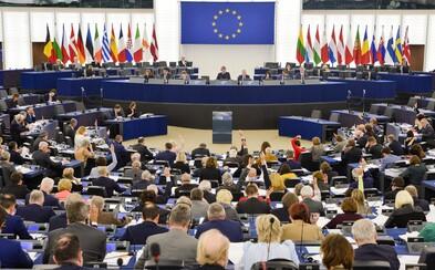 Až 86 procent Čechů považuje ochranu před terorismem za nejdůležitější téma eurovoleb