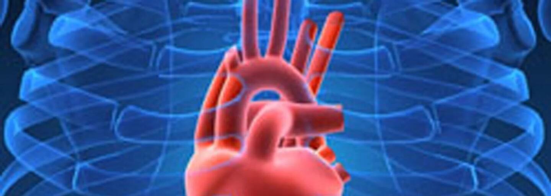 Bábätko sa narodilo bez srdca v tele. Vanellope má krehký orgán až nad kožou a žije len zázrakom