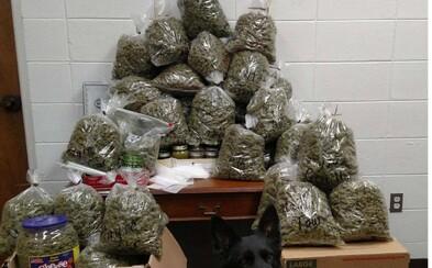 Babičku s dědečkem zatkli s 27 kily marihuany. Chtěli ji prý rozdat blízkým na Vánoce