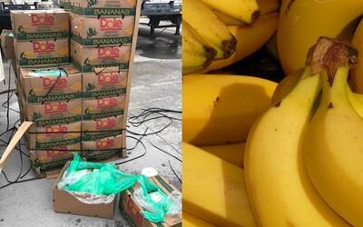 Banány darované věznici obsahovaly kokain za 18 milionů dolarů