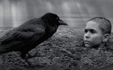 Během projekce českého filmu Nabarvené ptáče odcházeli diváci ze sálu. Byl na ně příliš explicitní
