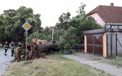Bouřky způsobily v Jihomoravském kraji spoušť. V Brně padaly stromy, Hodonínsko bylo vytopené.