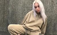 Billie Eilish čelí kritice kvůli prodávání merche s ukradenou anime grafikou