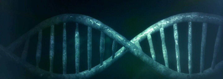 Biohacker si před překvapenými lidmi upravil své DNA lékem na herpes. Jeho kolega už úpravy genů litoval, ale Aaron se nevzdává