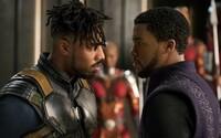 Black Panther doslova valcuje kiná v USA a po 2 týždňoch má na konte neuveriteľných 700 miliónov dolárov. Padá jeden rekord za druhým