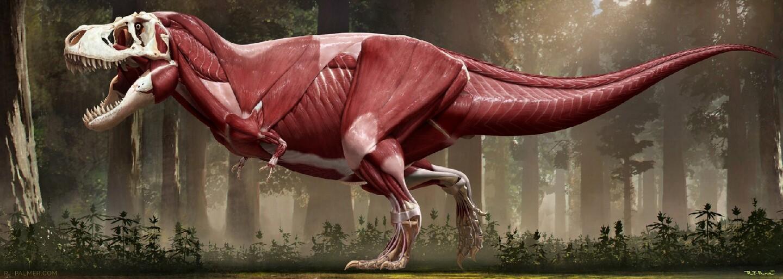 Bol T-Rex tučko? Vedci zverejnili jeho najvernejšiu podobu