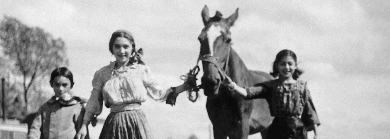 Byli pronásledováni, nenáviděni a posíláni do koncentračních táborů, ale nebyli to Židé
