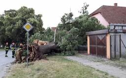 Bouřky způsobily v Jihomoravském kraji spoušť. V Brně padaly stromy, Hodonínsko bylo vytopené