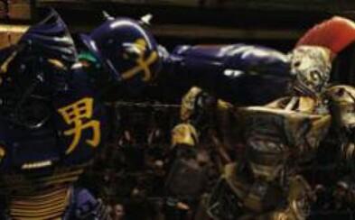 Boxujúci roboti sú budúcnosť!