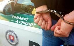 Bratislavčan chcel od ženy sex so zvieraťom. Cez internet jej poslal fotku takéhoto styku, teraz mu hrozia 2 roky väzenia