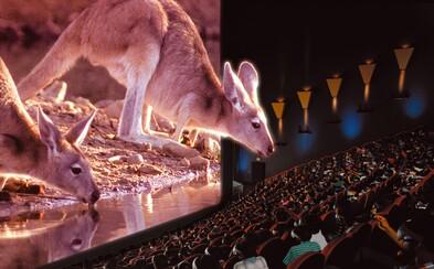 Bratislavský IMAX otvára už v júni. Aké veľké bude plátno, aký zvuk dostaneme a aká bude celková kvalita služieb? (Rozhovor)