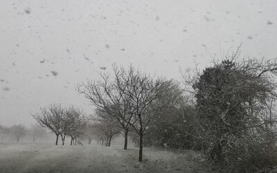 Bratislavu zasiahla náhla snehová búrka. Krúpy niekde dosahovali veľkosť viac ako 1 centimeter