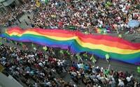 Brazílie opět zlegalizovala léčbu homosexuality a označila ji za nemoc. Svět se proti kontroverznímu rozhodnutí bouří