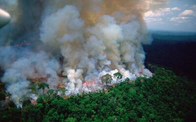 Brazilský prezident tvrdí, že amazonský prales zapálily charitativní organizace