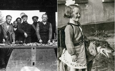 Briti za týždeň usmrtili 750-tisíc domácich miláčikov. Zabudnutý holokaust spôsobila prichádzajúca panika