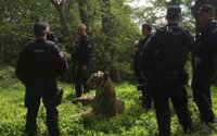 Britské policajné zložky zasahovali vrtuľníkom kvôli soche tigra. Domnievali sa, že šelma je živá a nebezpečná