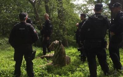 Britské policejní složky zasahovaly vrtulníkem kvůli soše tygra. Domnívali se, že šelma je živá a nebezpečná