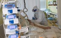 Brněnská nemocnice dnes ráno obdržela lék ivermektin pro 20 tisíc pacientů