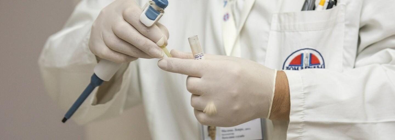 Brněnští vědci vyvinuli unikátní multifunkční hydrogel, kterým budou moci léčit zlomené kosti i popáleniny
