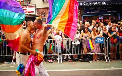 Budou moci čeští gayové a lesby uzavírat manželství? Poslanci zítra rozhodnou