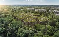 Budova správy lesů v Hradci Králové se sama doslova stane lesem. Zelená střecha nadchla zahraniční designové i ekologické weby