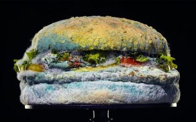 Burger King v nové reklamě ukázal plesnivý Whopper. Poukazuje na to, že jejich hamburgery nejsou umělé