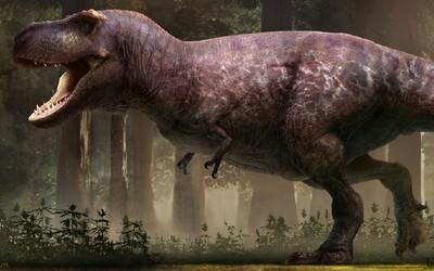 Byl T-Rex tlusťoch? Vědci zveřejnili jeho nejvěrnější podobu