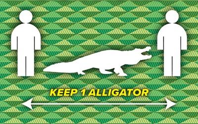 Udržujte si mezi sebou vzdálenost jednoho aligátora. Floridský okres nabízí v boji s koronavirem vtipnou radu.