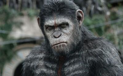 Caesar varuje pred obrovským bojom v prvej upútavke pre Vojnu na planéte opíc
